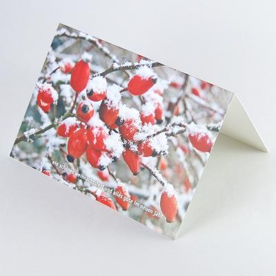 Winterliche Weihnachtsgrüße.Karte Für Weihnachten Und Neujahr Hagebuttenzweig Im Schnee Grit M Wolff