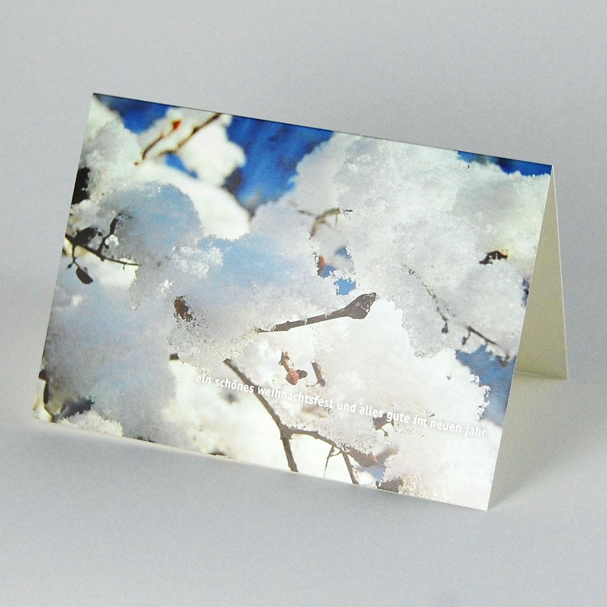 Winterliche Weihnachtsgrüße.Karte Für Weihnachten Und Neujahr Zweig Mit Schnee